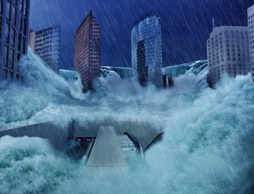 Noah og syndefloden – Beviser på en verdensvid flom