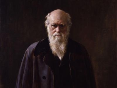 Darwinisme og evolusjon