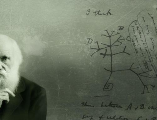 UiO og evolusjonens feilskjær