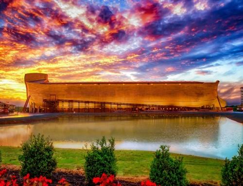 Noahs Ark besøkt av millioner